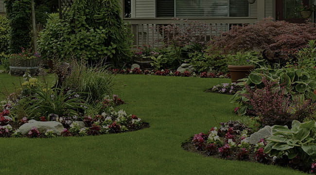 Grand Prairie Landscape Design